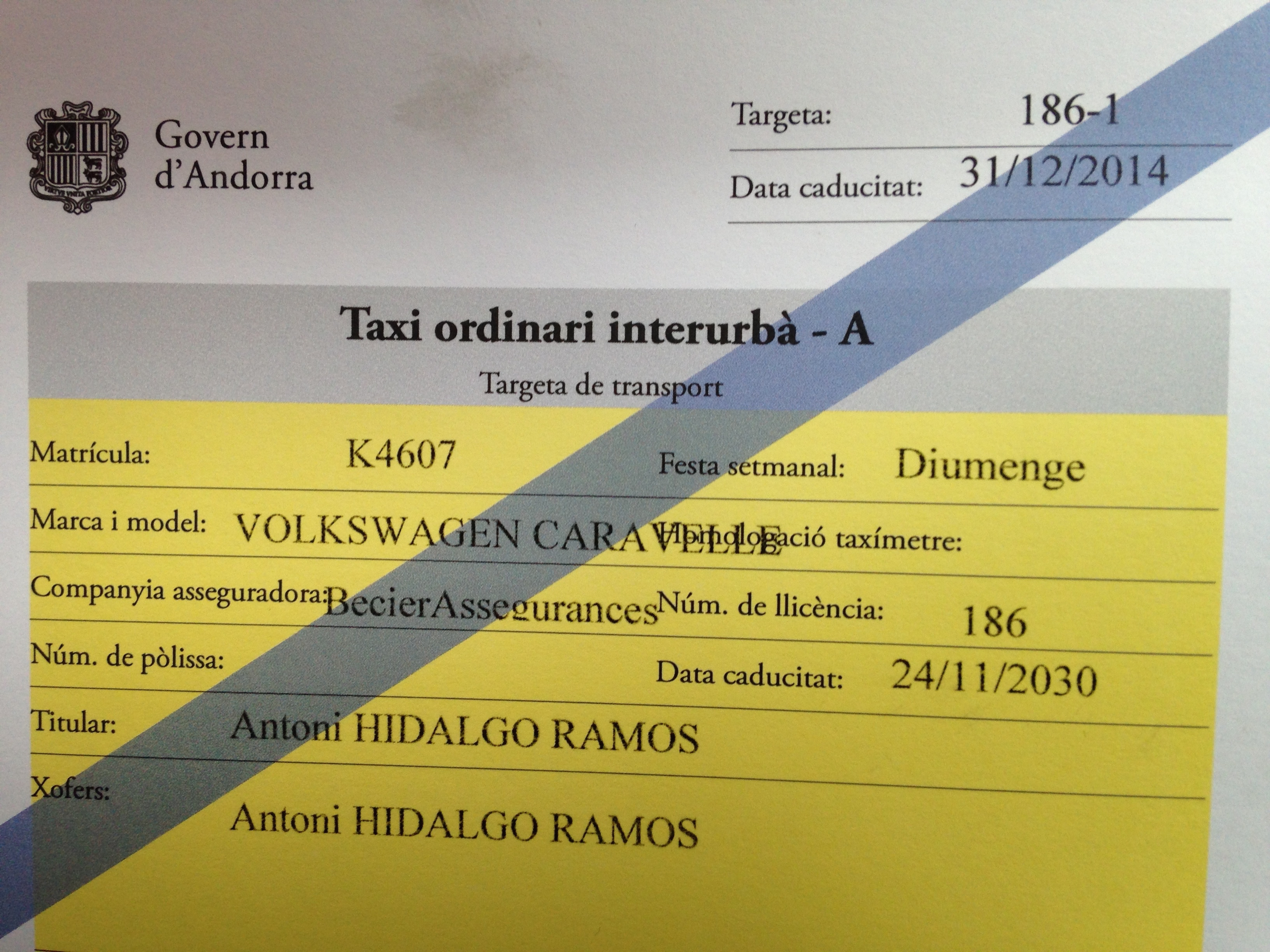Taxi Hidalgo transport licence